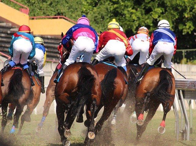 závody koní