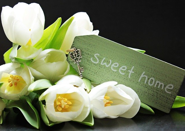 květiny a sweet home